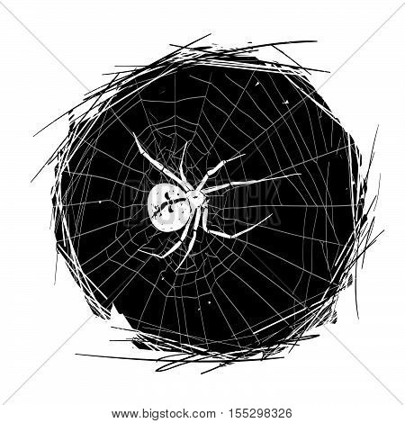 Tarantula on the background of the spiderweb. It can be used for tattoo