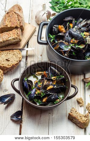 Fresh Mussels Served In A Sunny Day