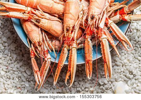 Fresh Scampi Served On The Beach In A Blue Bowl