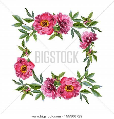 Wildflower peony flower frame in a watercolor style isolated. Full name of the plant: peony. Aquarelle wild flower for background, texture, wrapper pattern, frame or border.