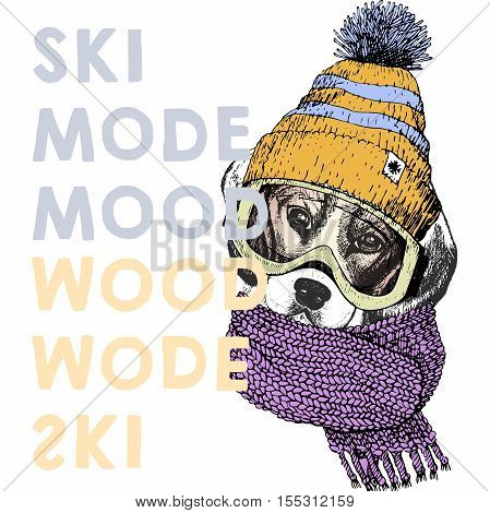 Vector poster with close up portrait of beagle dog.Ski mode mood. Puppy wearing beanie scarf goggles. Hand drawn illustration. Use for sport shop resort ski-rent promotion print and other design.