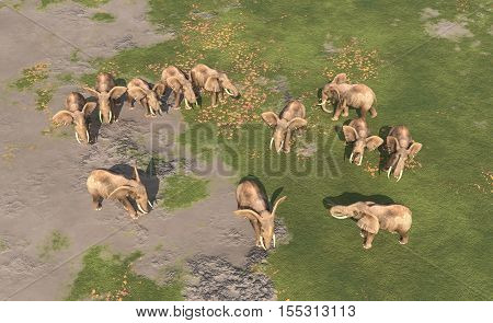 Computer generated 3D illustration with an aerial view of an elephant herd