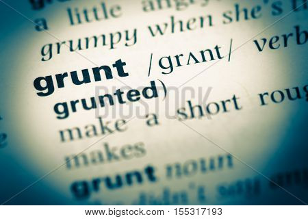 Close Up Of Old English Dictionary Page With Word Grunt