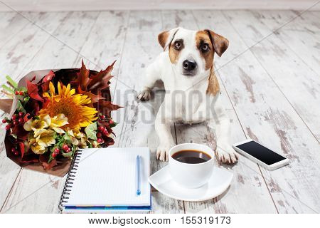 Notebook with pen for planning. Coffee, phone, flowers and dog