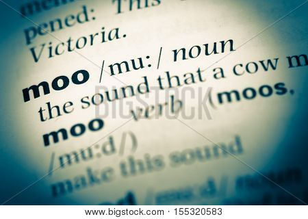 Close Up Of Old English Dictionary Page With Word Moo