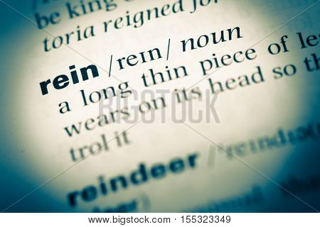 Close Up Of Old English Dictionary Page With Word Rein