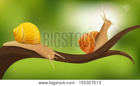 Nature composition with two realistic snails in the environment on tree limb with blurry green background vector illustration