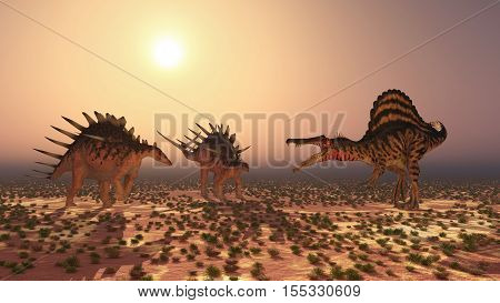 Computer generated 3D illustration with the dinosaur Spinosaurus attacking the dinosaur Kentrosaurus