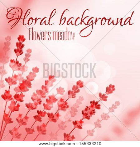 Floral background with flower meadow. Vector design for perfume, aroma therapy, soap, cosmetic, perfumery products. Provence field of blooming flowers on red blurred sunny background