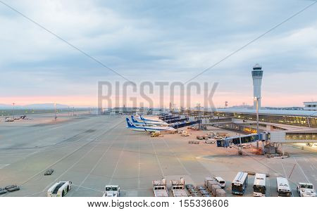 Ana Aircraft In Chubu Centrair International Airport Japan