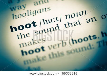 Close Up Of Old English Dictionary Page With Word Hoot