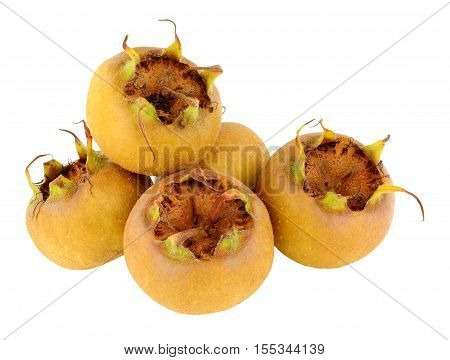 Group of common medlar fruit isolated on a white background