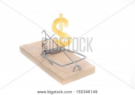 The a Mousetrap with piece of cheese