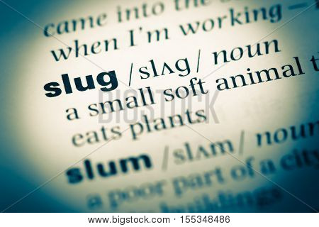Close Up Of Old English Dictionary Page With Word Slug