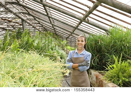 Pretty young gardener in greenhouse