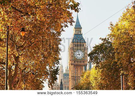 Big Ben In Sunny Autumn Day