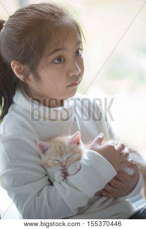 Happy little Asian girl hugging lovely scottish fold kitten