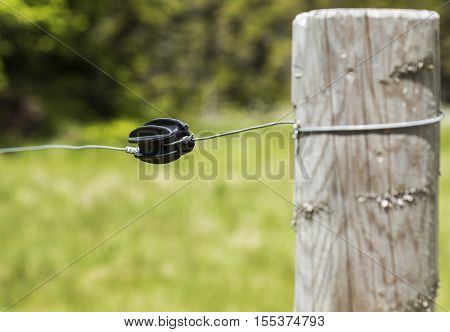 Plastic wire insulator for controlling cattle on a farm with electric shepard.