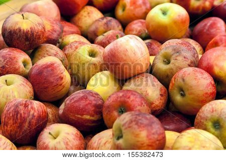 Red Apples On A Counter Of Shop