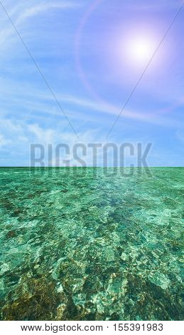 Coral Scape at PhiPhi Island with Perfect sunny blue Sky phuket thailand
