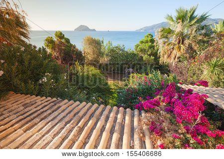 Old Tiling Roof Slope Goes Down In Summer Garden