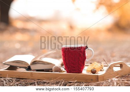 Red knitted cup with tea staying in wooden tray with open book over yellow nature background. Autumn season.