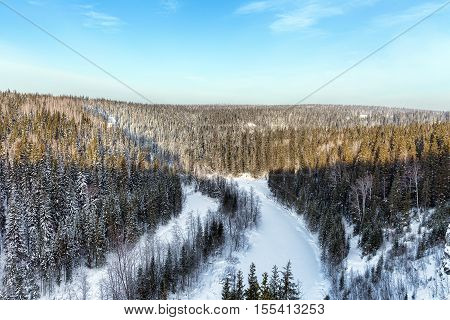 Aerial view of snow-covered trees in the mountains