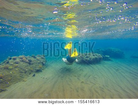 Underwater landscape with snorkel and coral reef. Snorkeling man in mask swimming undersea. Diving in tropical seaside. Blue lagoon with corals and coral fishes. Freediver in fins