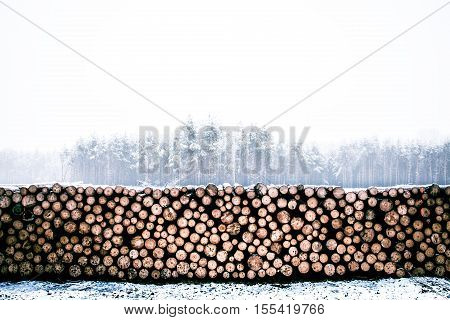 snowy stacked chopped fire wood log pile