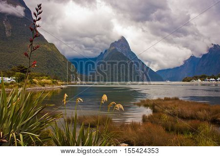 National Park of Milford Sound in New Zealand