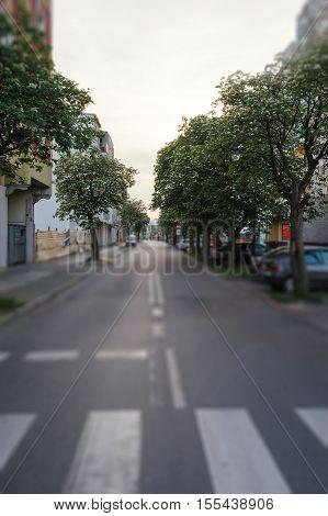 Zebra Crossing On A Road