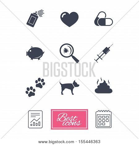 Veterinary, pets icons. Dog paws, syringe and magnifier signs. Pills, heart and feces symbols. Report document, calendar icons. Vector