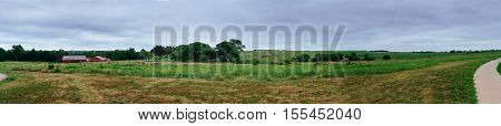 Fields With Rapeseed On The Danish Island Langeland, Europe.