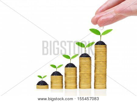 Hand watering green plants growing on a pile of golden coins / Green business and investment / Business with environmental concern / business with csr
