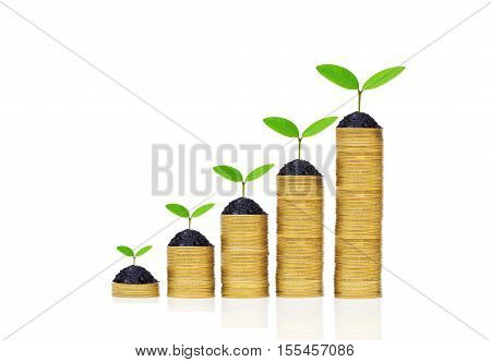green plants growing on a pile of golden coins / Green business and investment / Business with environmental concern / business with csr
