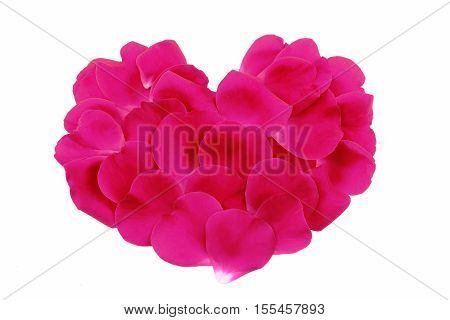 Pink rose petals in heart shape isolated on white background