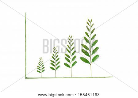 Tree leaves arranged as a green graph / csr / sustainable development /corporate social responsibility