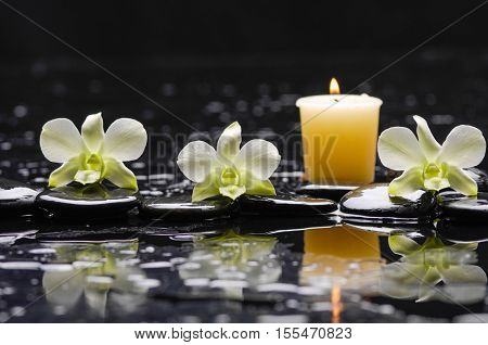 still life with black stones and three orchid,candle