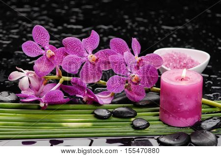 Still life with Pink orchid with black stones with candle ,,salt in bowl green plant