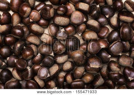 Chestnuts background. Autumn harvest of Chestnuts background