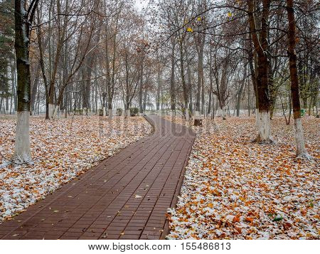 Autumn park path after the first snow in October