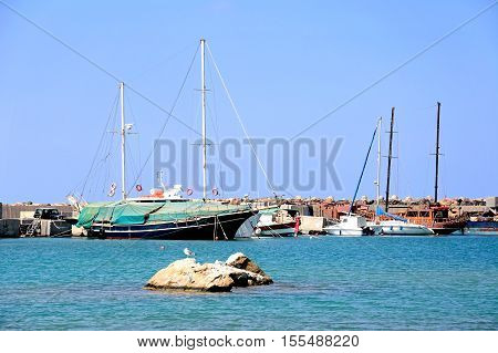 MALIA, CRETE - SEPTEMBER 14, 2016 - Yachts moored in the harbour with a seagull standing on a rock in the foreground Malia Crete Greece Europe, September 14, 2016.