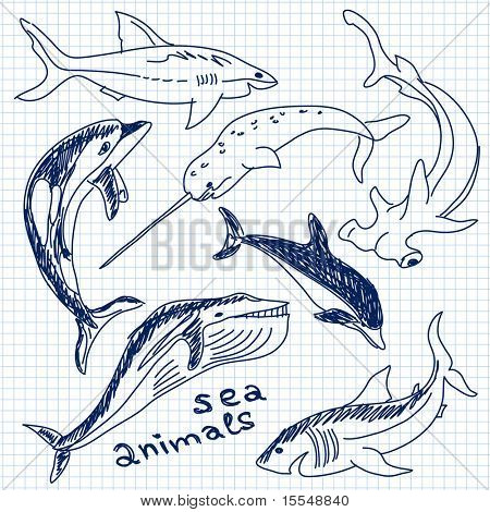 sea animals simple drawing vector poster