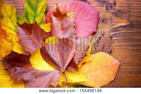 Autumn Leaves. Autumn Leaves Heart. Autumn Leaves Over Wooden Background