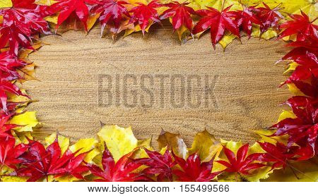 Frame composed of colorful autumn leaves with wood background