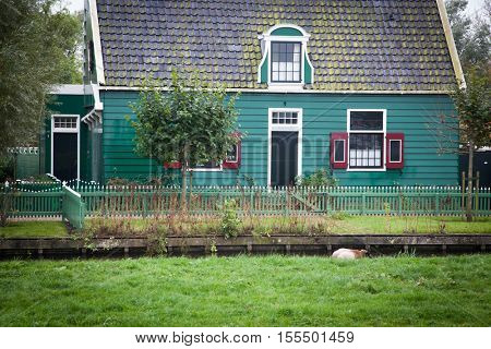ZAANDAM, Holland - OCTOBER 24, 2016: Typical Dutch houses. Zaanse Schans is a museum village with dutch houses and wind mills. In most of the mills still live people