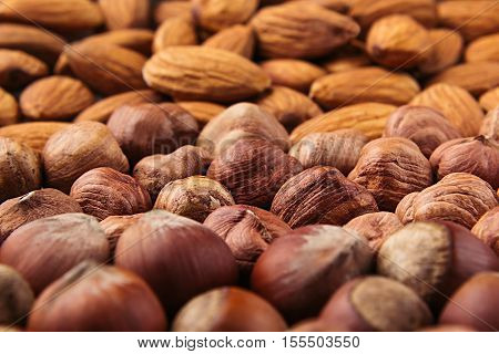 Nut background of different nuts - almond hazelnut and kernel close-up. Vegetarian background.