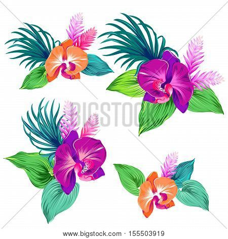 few vector orchid bouquets. Tropical flowers and leaves, beautiful botanical llustration, isolated on white, editable. for stickers, card, invitations, beautiful floral.