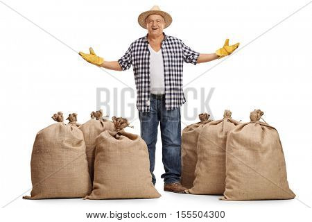 Full length portrait of a mature farmer standing between burlap sacks and gesturing with his hands isolated on white background