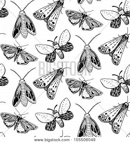 Moth seamless pattern. Hand drawn illustration of flying insects. Black and white sketches